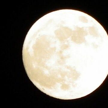 満月や新月の日は何か良いことが起こりそうだと思いますか?