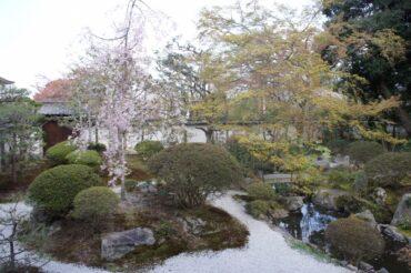かって平等院と呼ばれていた寺院が三井寺にありました。